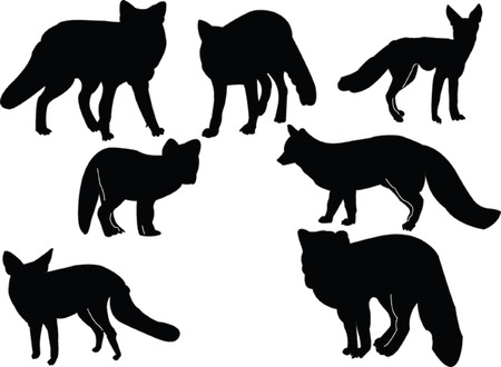 fox silhouette collection - vector Illustration