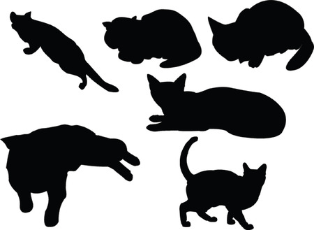 cats collection - vector Stock Vector - 5157835