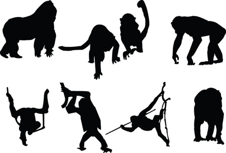 baboon: monkey silhouette collection Illustration