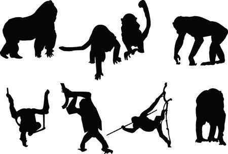 mono silueta colección Ilustración de vector
