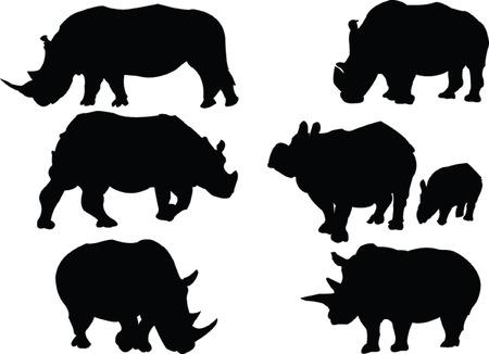 rhinoceros collection - vector