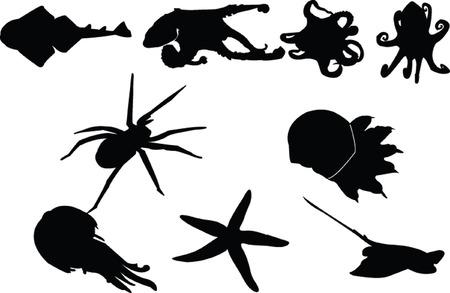 underwater image- vector Vector