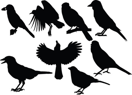 chatterers collection Vector