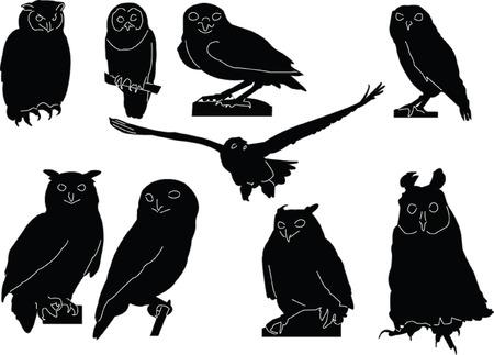 owls collection - vector Vektorové ilustrace