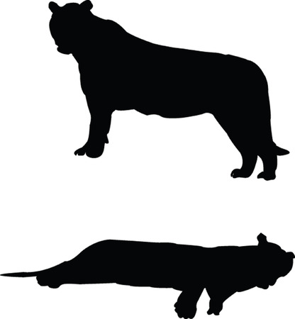 tigers collection silhouette Vector
