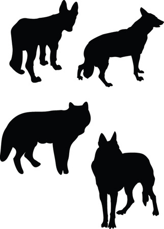 wolfs collection - vector Vector