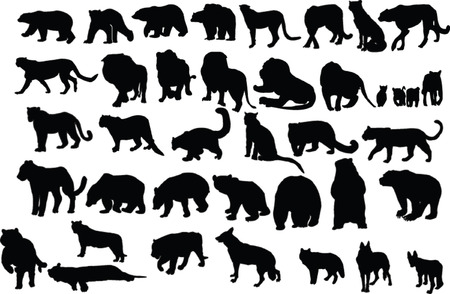 wild beast collection Vector