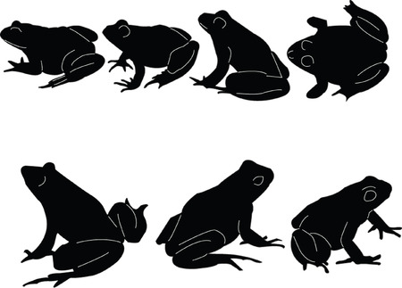 frogs collection Vector