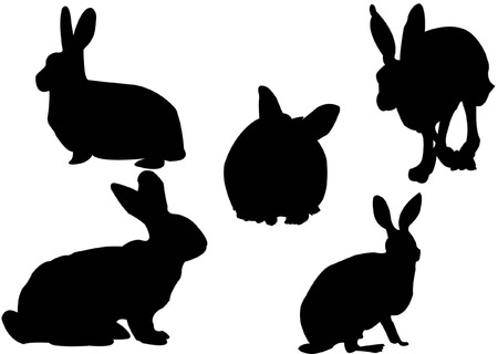 silhouette lapin: Les lapins collection - vector