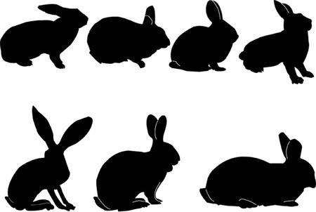 bunnies collection Stock Vector - 5286390