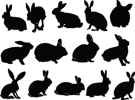big collection of bunny Stock Vector - 5286402