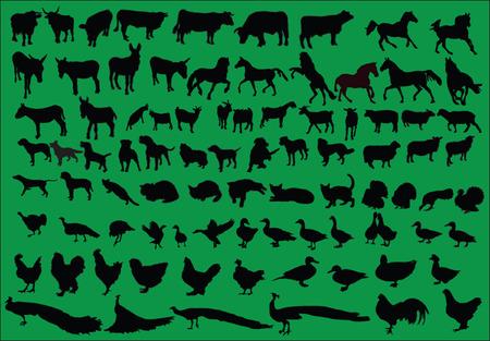 mix farm animal - vector Stock Vector - 5329529