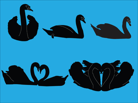 stylistic embellishments: swans collection - vector