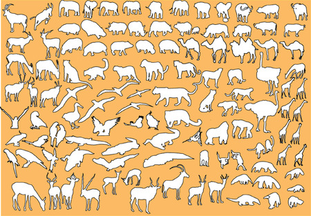 southamerica: mix animal silhouette - vector