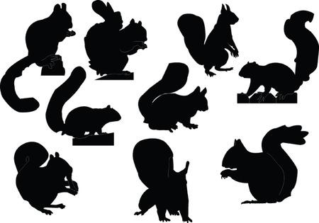 silhouette arbre hiver: squirrels collection - vecteur Illustration