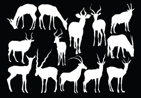 antelopes collection - vector Stock Vector - 5331971