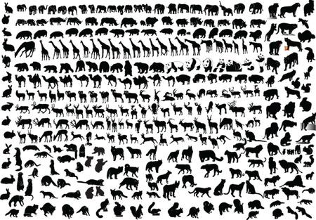 giraffe silhouette: big collection of wild animals