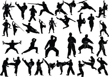 kungfu: fighting sports