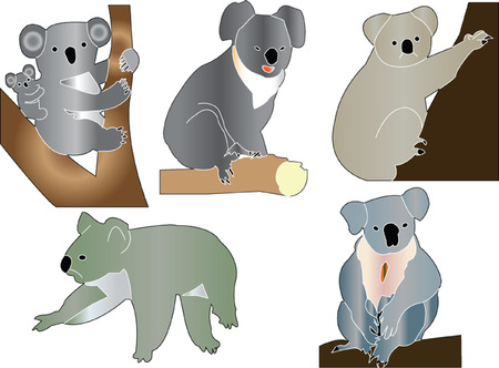 koalas collection Vector