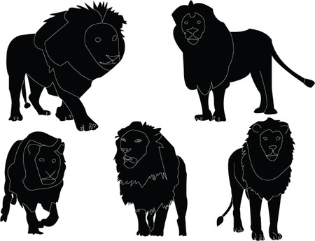 lions collection silhouette - vector Vector