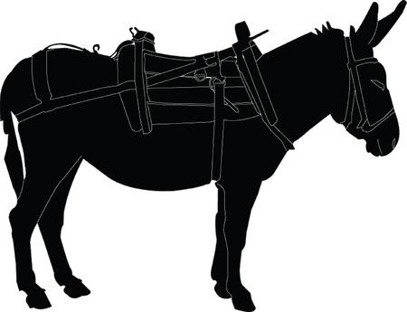 donkey silhouette  Stock Vector - 7689018