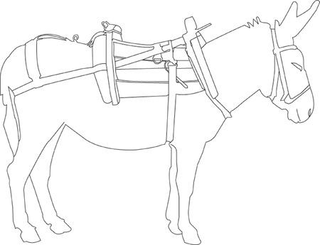 donkey tail: silueta de burro  Vectores