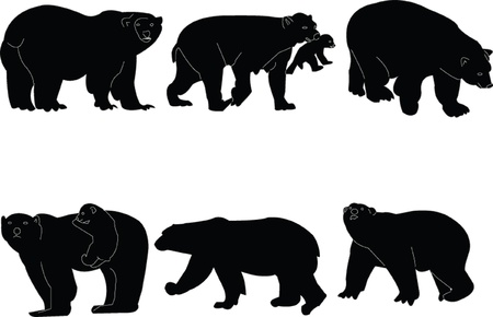 polar bears collection - vector Vector
