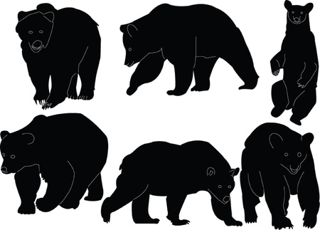 bears collection silhouette - vector