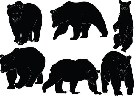 oso negro: lleva la colecci�n silueta - vector Vectores