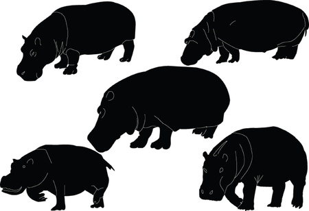 hippopotamus collection - vector Stock Vector - 9267485
