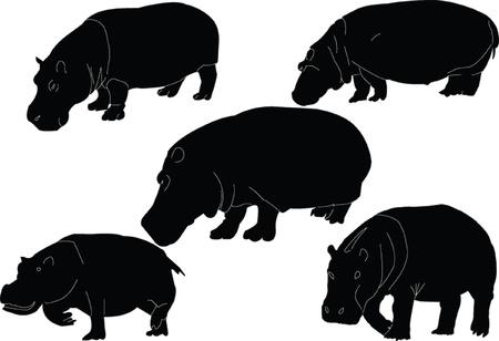 hippopotamus collection - vector Stock Vector - 9267485