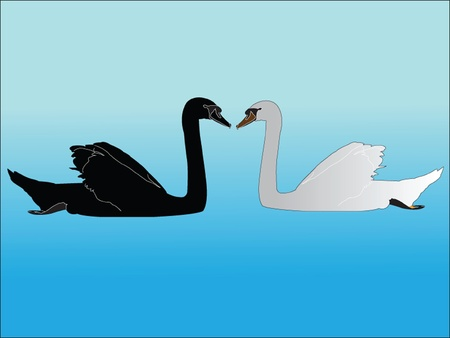 stylistic: whiteand black swan - vector