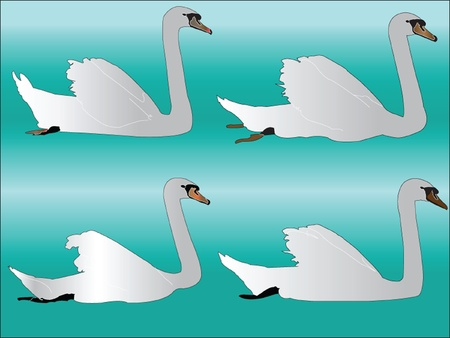 white swan collection - vector Stock Vector - 12989503