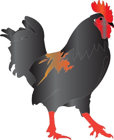 redneck: rooster silhouette illustration - vector