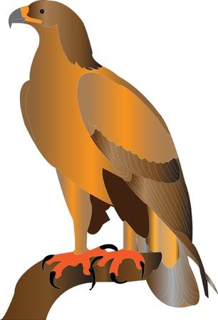 aigle royal: aigle royal silouette Illustration