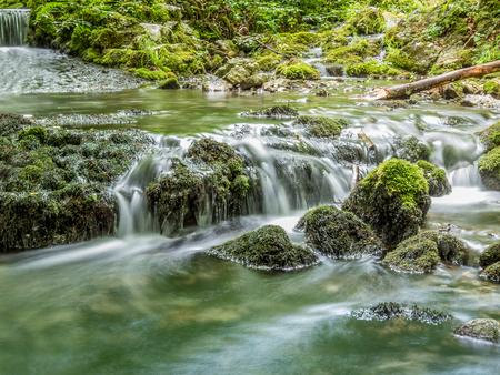 forrest: Dreamy waterfall in deep forrest