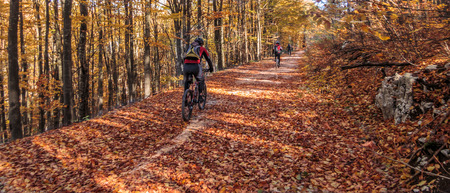country roads: Riding bicycle through country roads in autumn