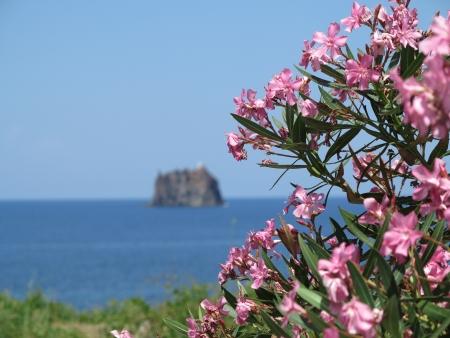 stromboli: View to the Strombolino  in the mediterenean sea
