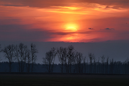 tree disc: The disk of the sun sets behind the clouds, the sunset in early spring Stock Photo
