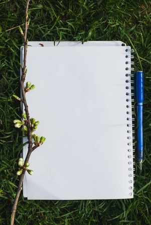 describe: A Notepad with a pencil and a branch of plum blossoms on the grass