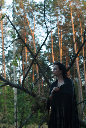 spells: a young witch in the woods, a woman in a dark dress on a background of old branches, the mage uses spells with sparks Stock Photo