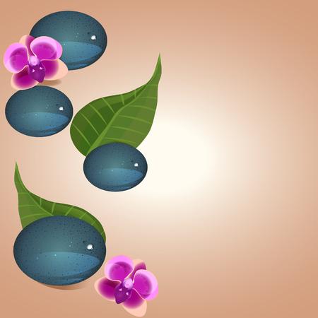 zen stone: Plumeria flowers and Zen stone isolated on pastel background