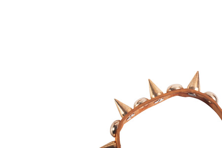 template for designer, frame, brown leather Bracelet with spikes isolated on white background, fashion accessory Stock Photo