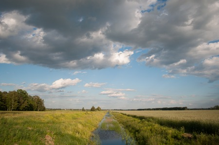 Water channel for irrigation of the fields, the rye field and blue sky with clouds, rural landscape Stock fotó