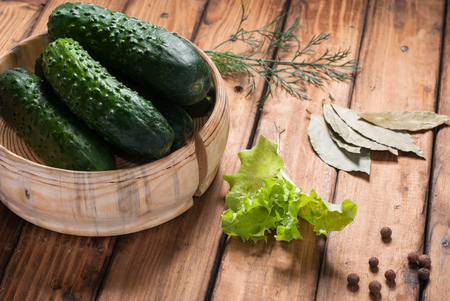 Cucumbers for preservation in wooden utensils. Dill, lettuce, pepper, Bay leaf