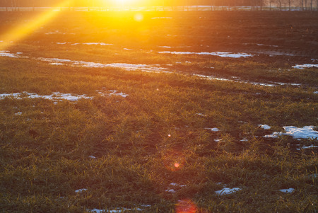 Sunlight in the early morning. Spring in the countryside. Early spring in Belarus, Polesie,