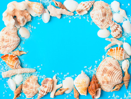 frame from mix seashells and corals on blue background photo