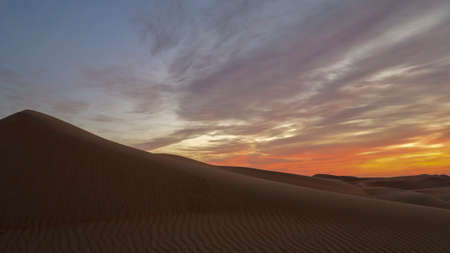 Beautiful sunset colors of Arabian desert. Palm trees at the foreground