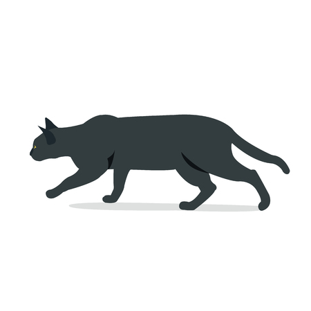 Black cat hunting with isolated white background vector illustration.Black cat in front of a white background