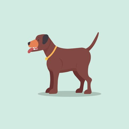 Pit bull brown dogs vector.Flat cartoon puppy isolated background